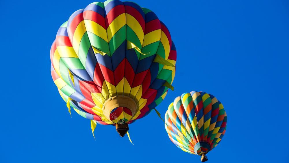 Colorful hot air balloons wallpaper