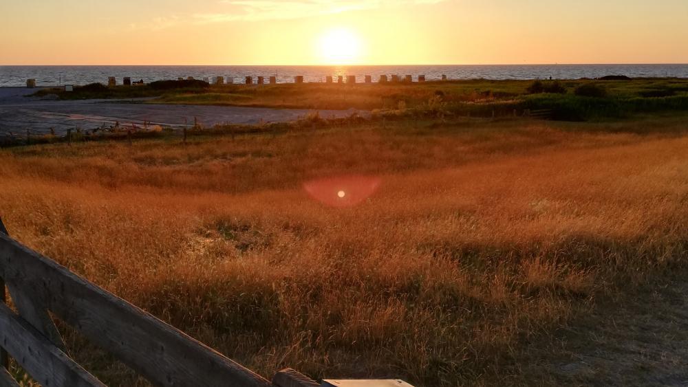 East Coast Sunset wallpaper