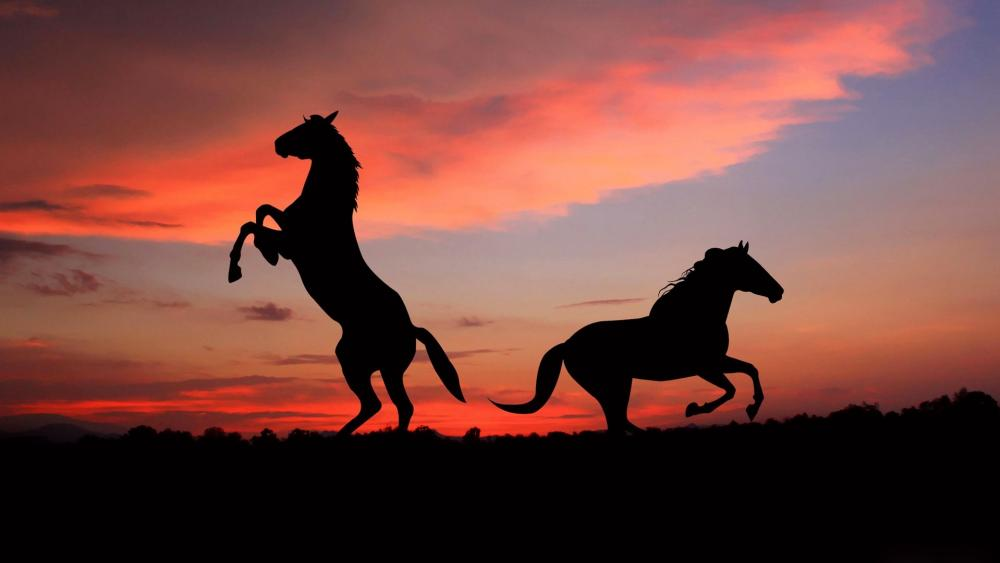 Horse silhouettes wallpaper