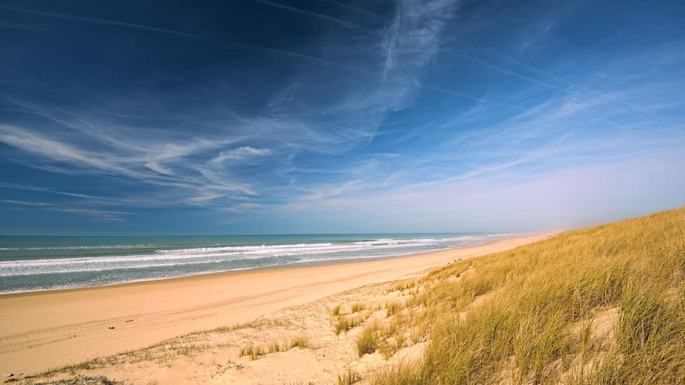 Sandy beach with grassy dune wallpaper