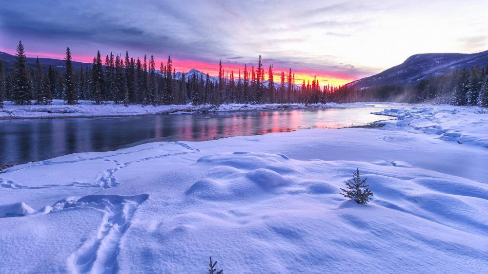 River in winter wallpaper