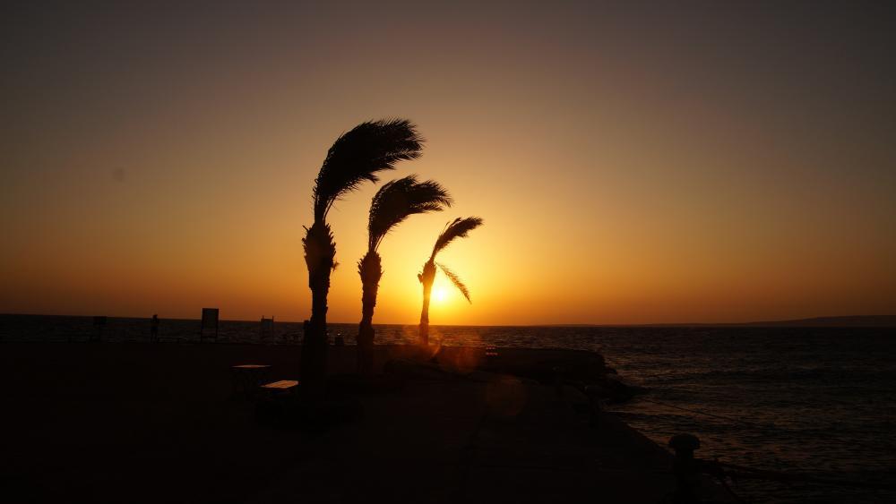Sunrise in Egypt wallpaper