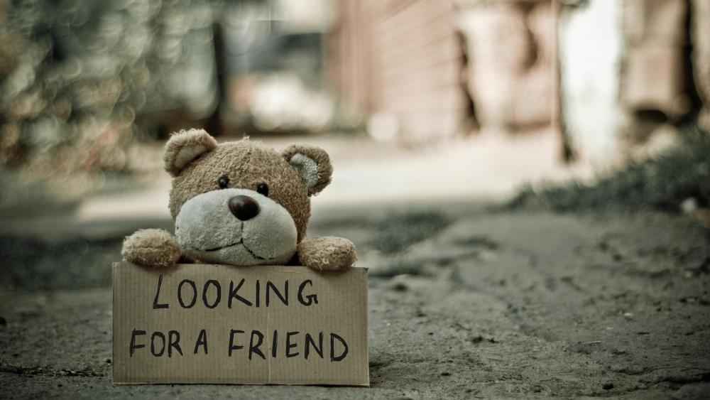 Looking for a friend wallpaper
