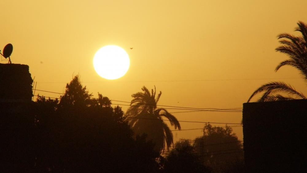 Sunset at the Nile wallpaper