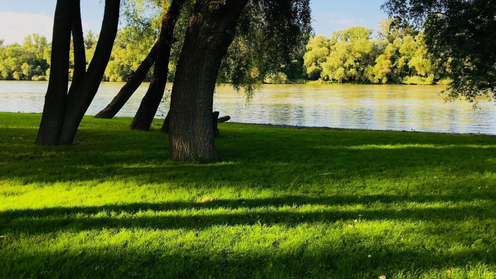 Danube bend at summer wallpaper