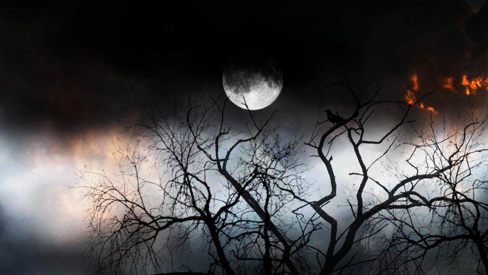 The mystery of night wallpaper