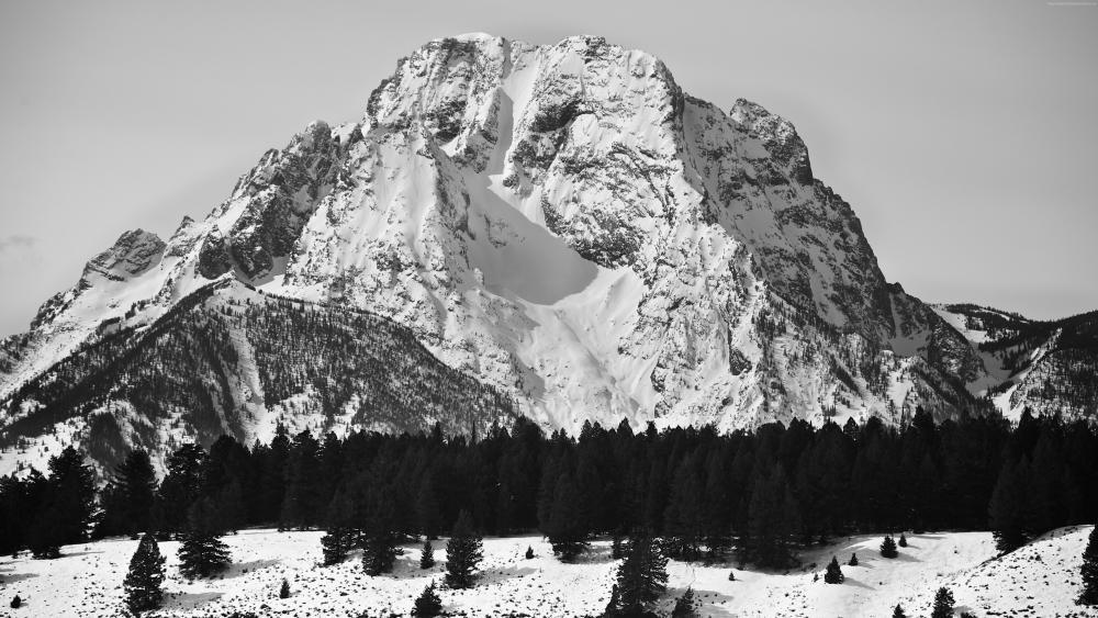 Mount Moran in Black and White wallpaper