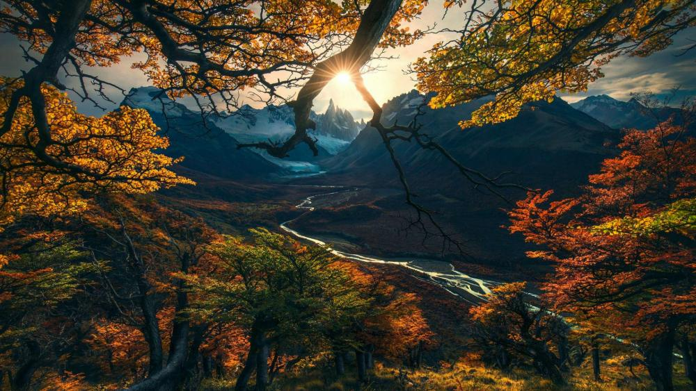 Autumn scenery wallpaper