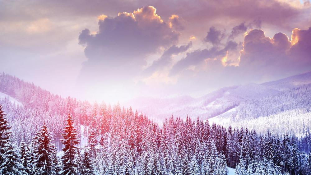 Snowy mountain forest wallpaper