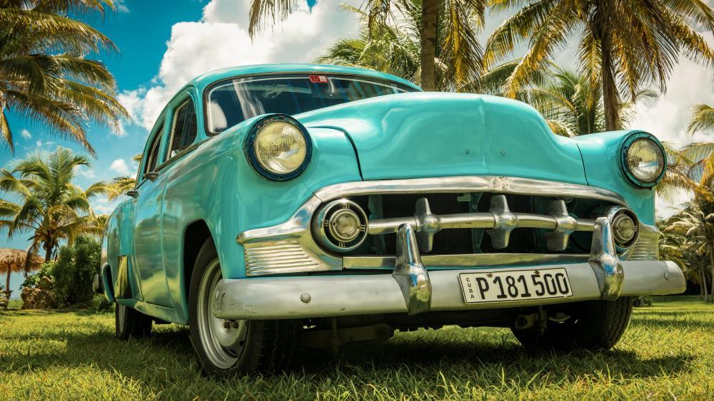 Vintage car under the palms wallpaper