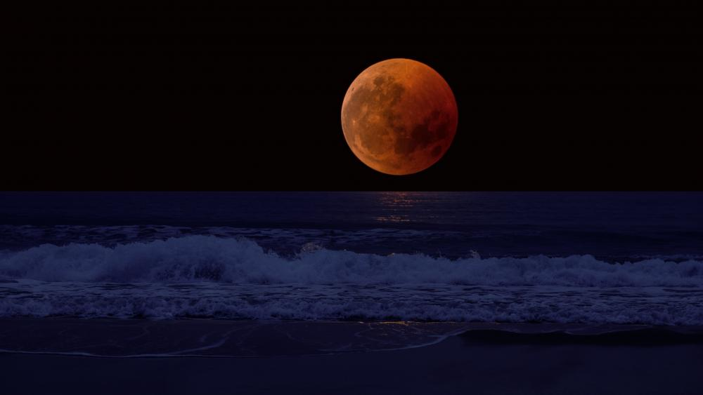 Full moon from the beach wallpaper
