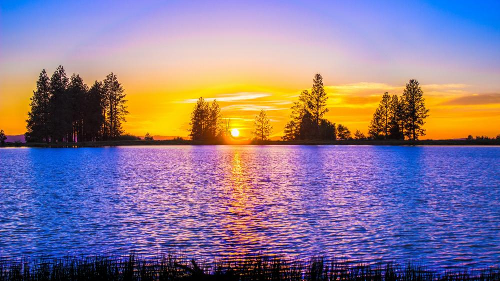 Scenic view of a lake against the sunset wallpaper