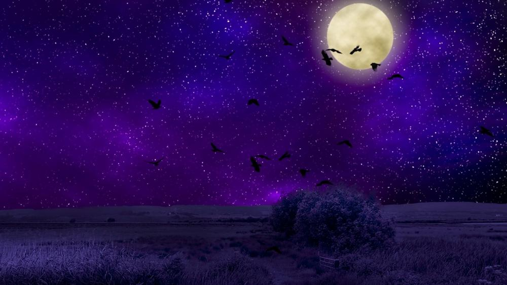 Starry night with full moon wallpaper