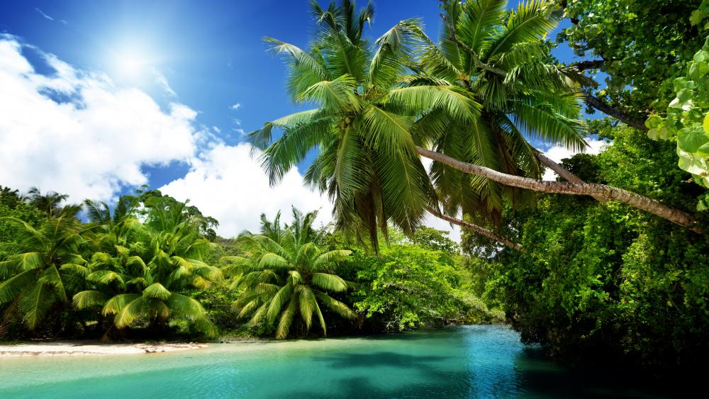 Tropical landscape wallpaper