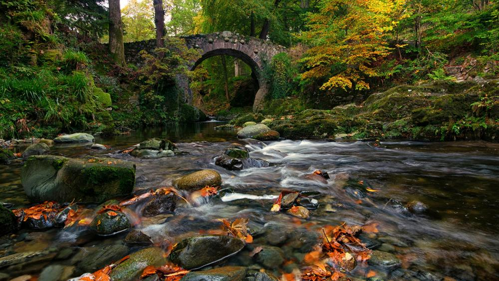 Foyle's Bridge in Tollymore Forest Park wallpaper