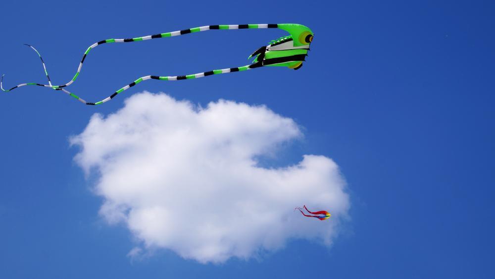 Kite Festival wallpaper