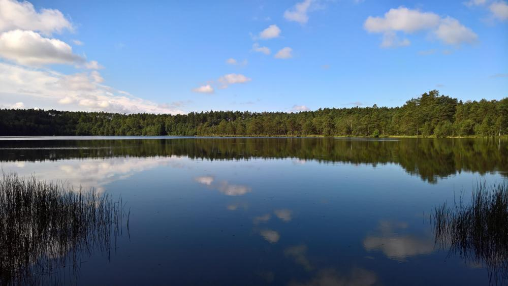 Jezioro Lubowidzkie wallpaper
