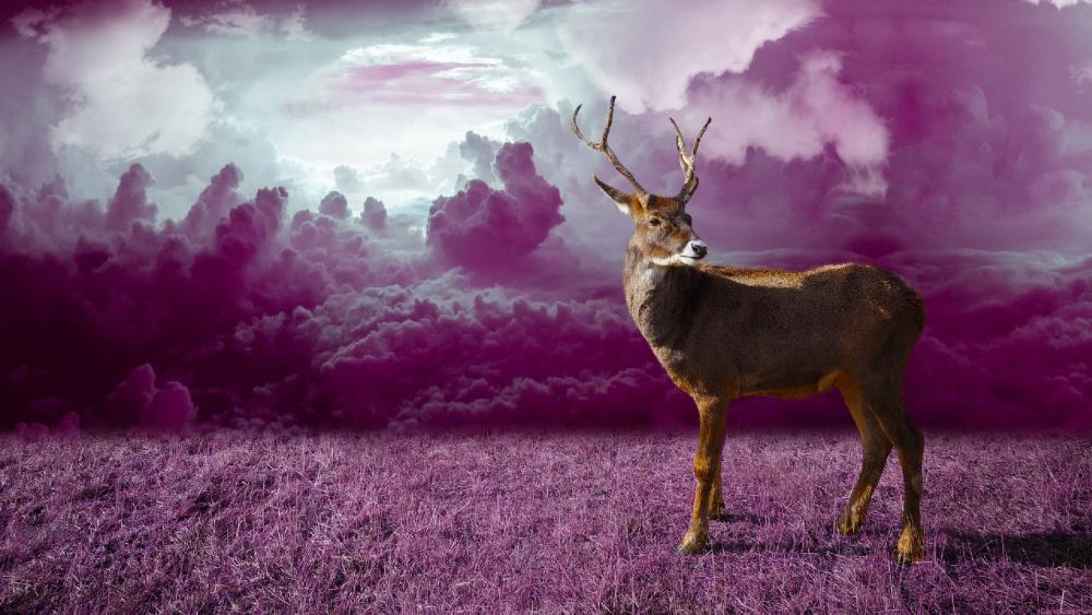Deer in the purple field wallpaper