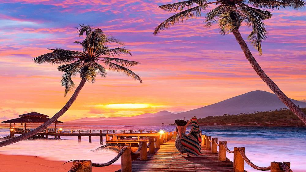Joy In Tropical Sunset wallpaper