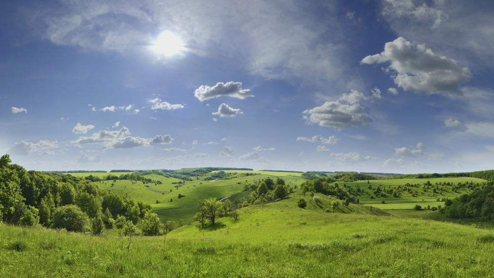 Summer green hills wallpaper