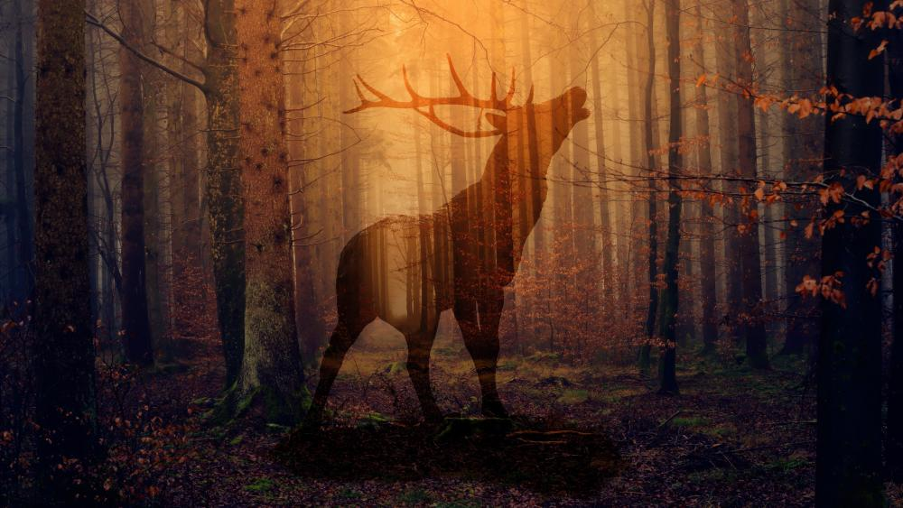 Deer silhouette in the forest wallpaper