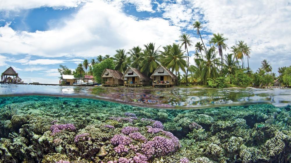 Tahiti Bungalows and coral reef wallpaper