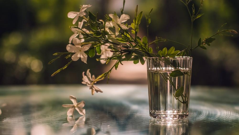 Flowers in a glass of water wallpaper