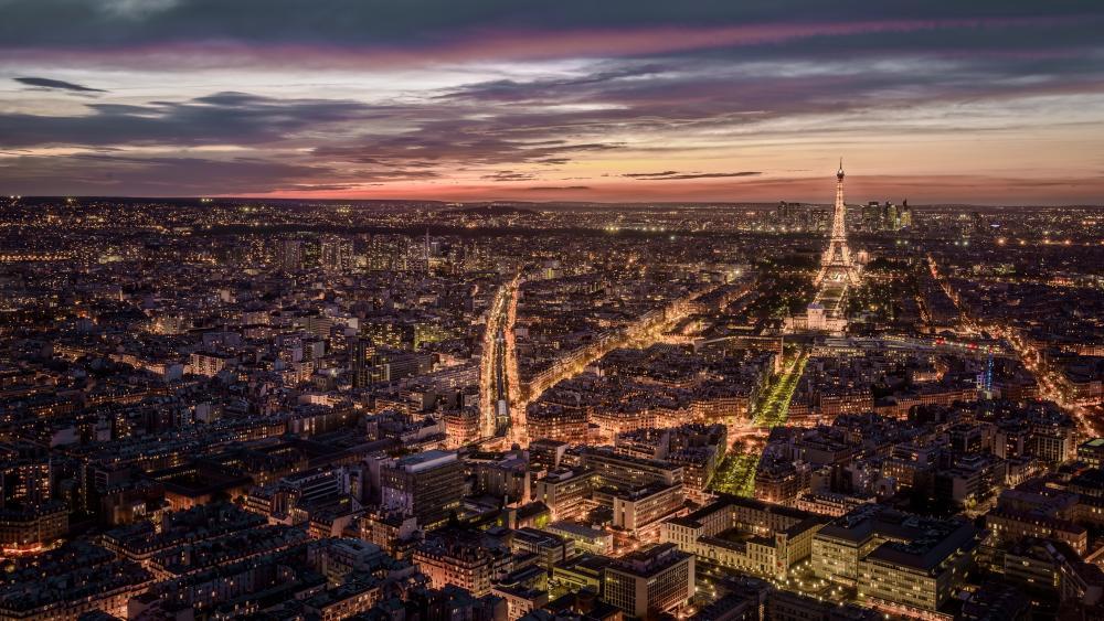 Paris aeriel view wallpaper