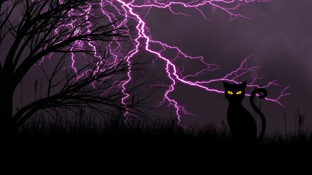 Black cat with lightning stirikes wallpaper
