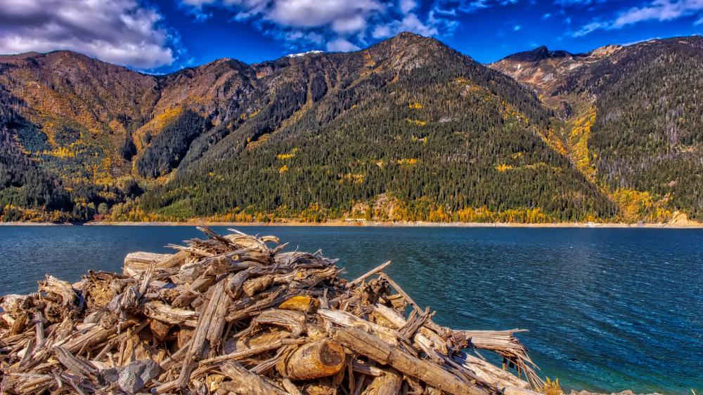 Kinbasket Lake HDR wallpaper