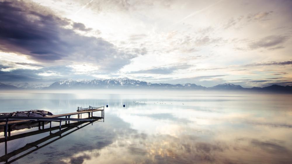 Misty morning lake wallpaper