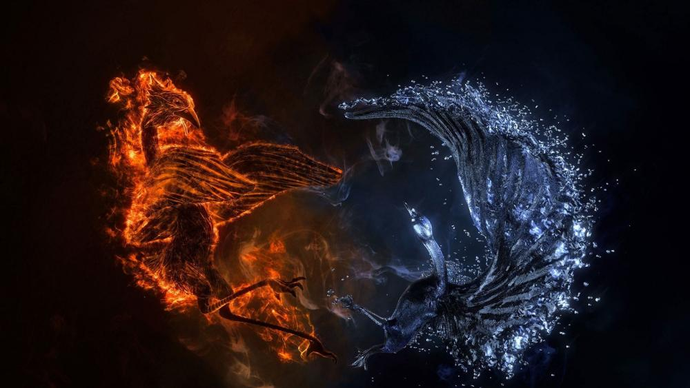 Ice and fire Phoenix birds fight wallpaper