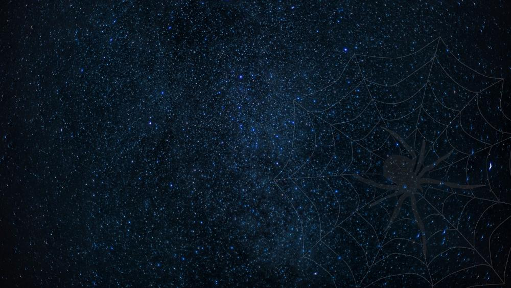 Spider web on the starry sky wallpaper