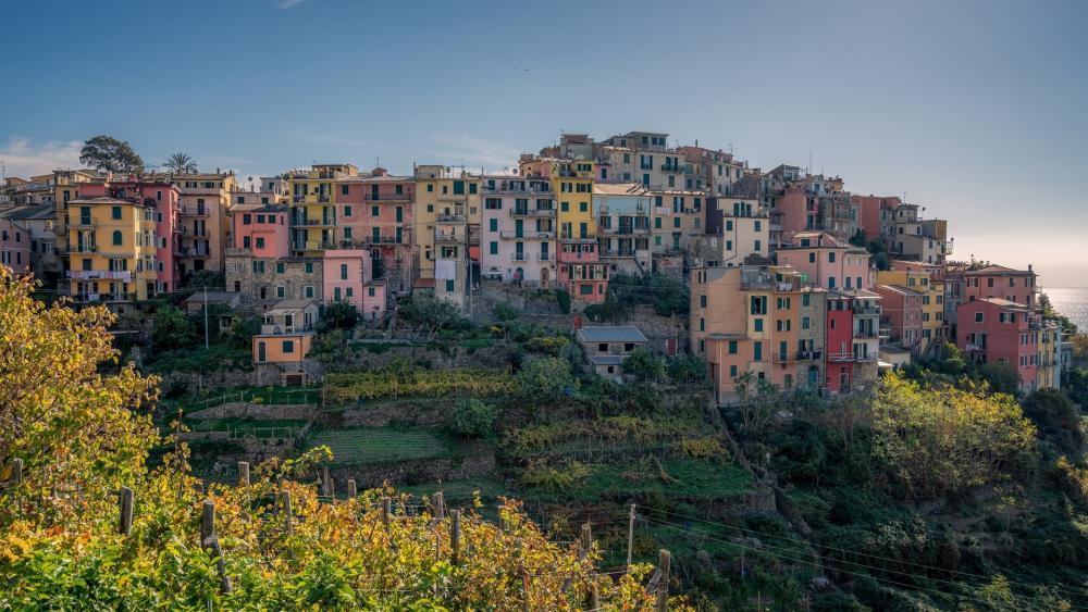 Corniglia (Cinque Terre, Italy) wallpaper