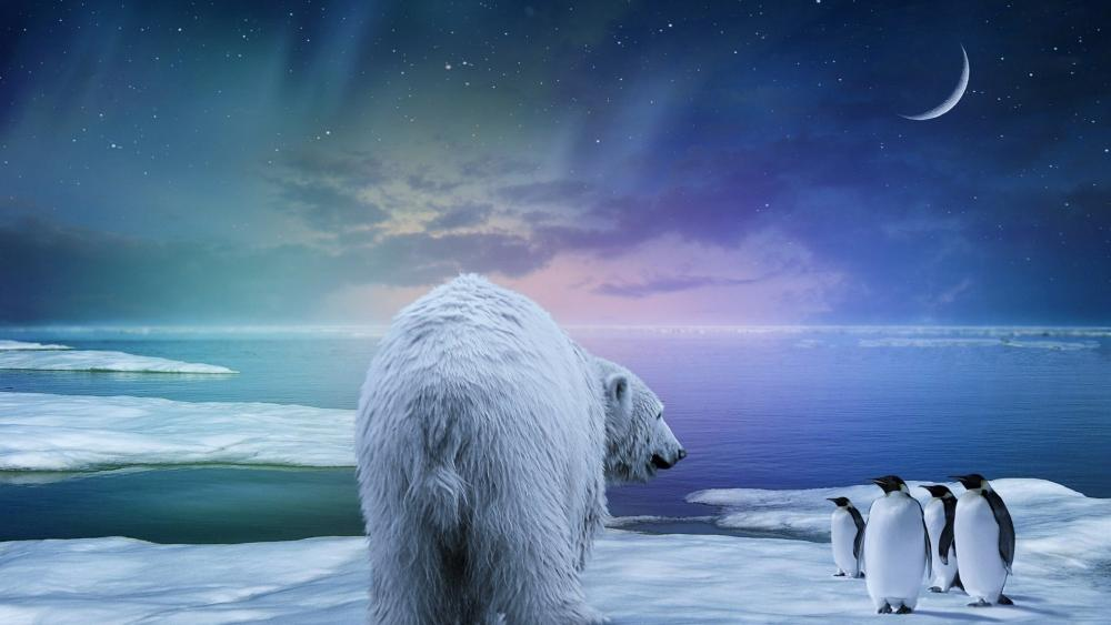 Polar bear and penguins under the northern lights wallpaper