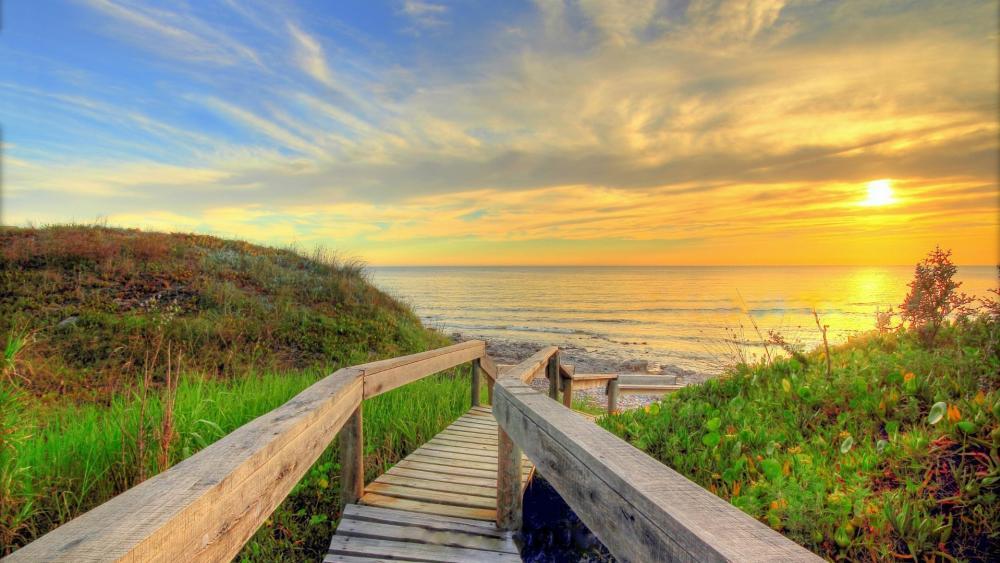 Boardwalk to the beach wallpaper