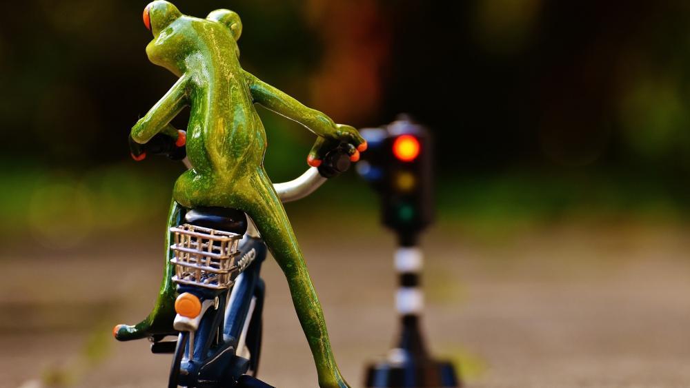 Frog Rider wallpaper