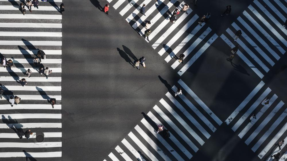 Crosswalk in Japan wallpaper