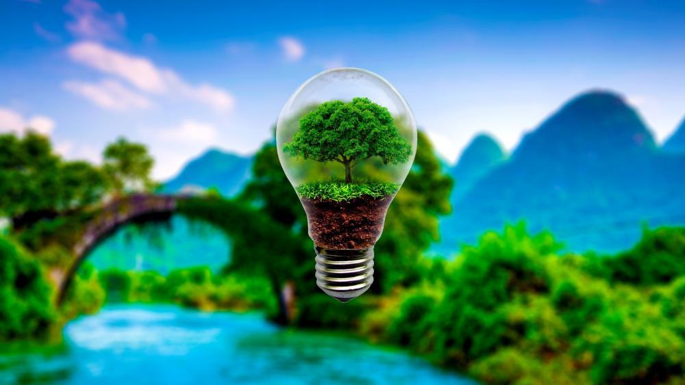 Tree in a light bulb wallpaper
