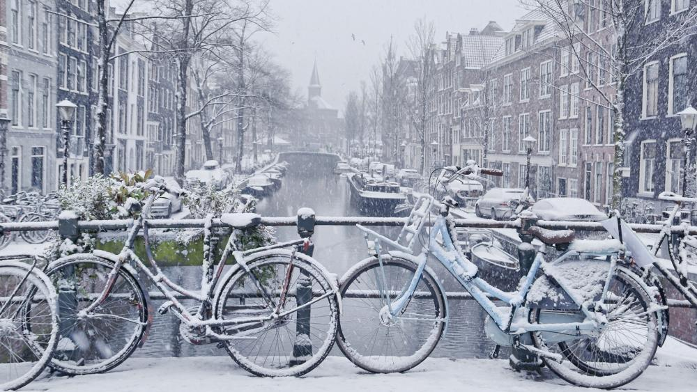 Snowy bikes in Amsterdam wallpaper