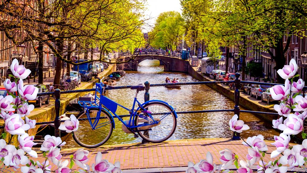 Bicycle above the canal wallpaper