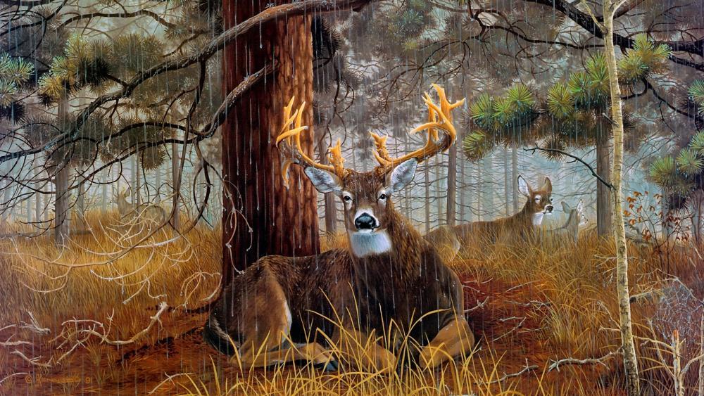Deer among the pines wallpaper