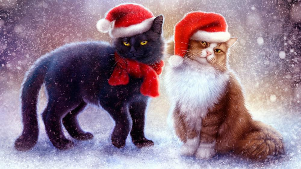 Cats under the snow with Christmas hats wallpaper
