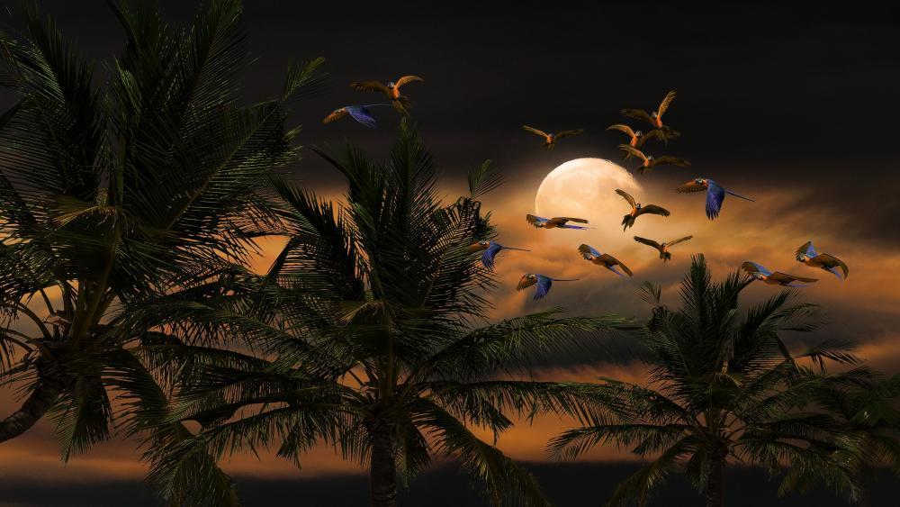 Parrots in the moonlight wallpaper