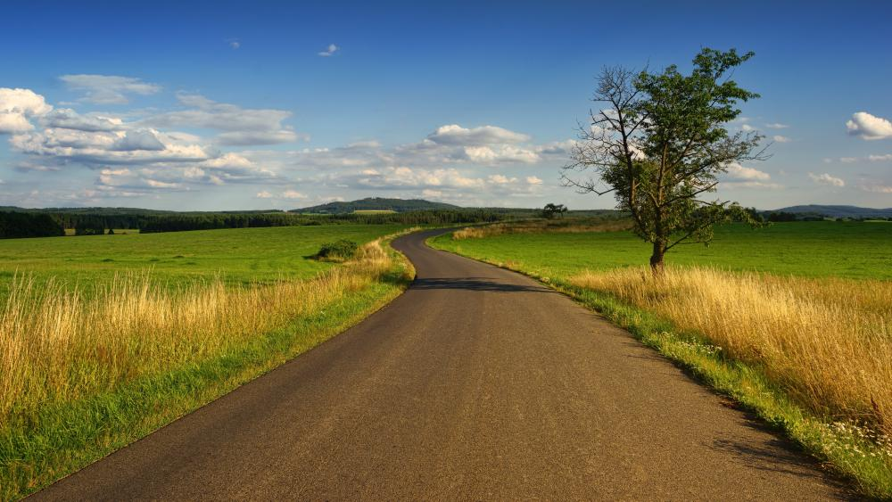 Endless road with a lone tree wallpaper