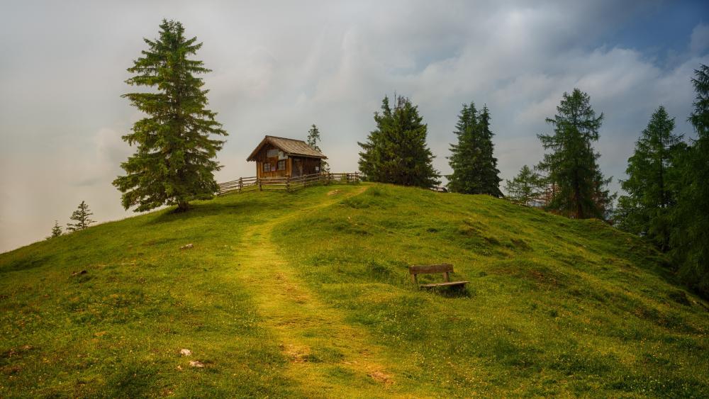 A Trail to a little hut wallpaper