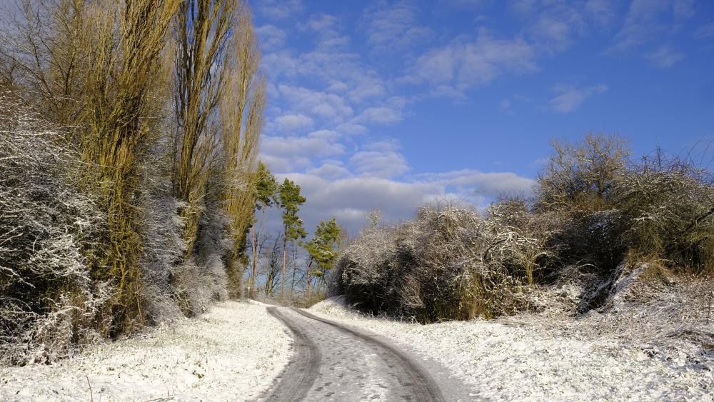 Snowy winter road wallpaper