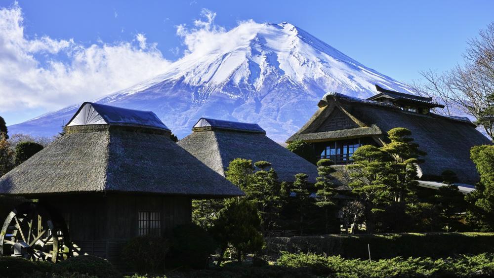 Mount Fuji from Oshino Hakkai wallpaper