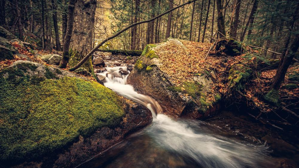 Creek among the mossy crags wallpaper