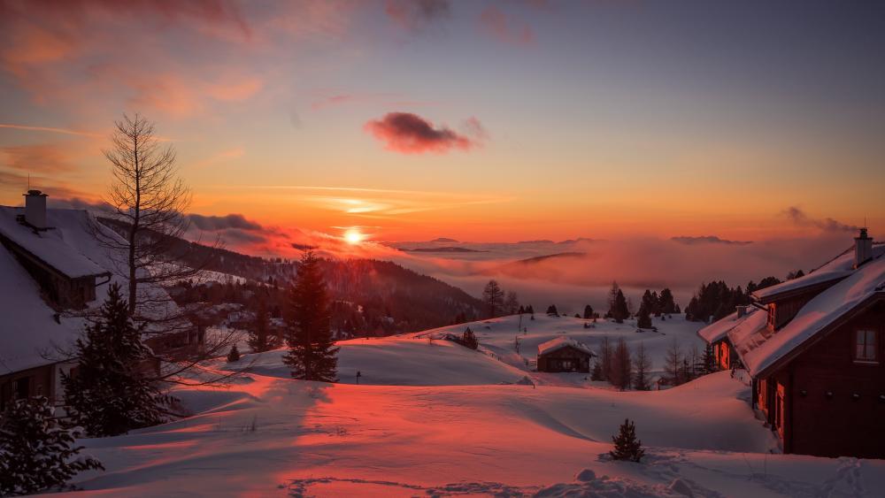 Winter sunrise wallpaper